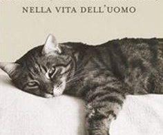 sociologia : Impronte di gatto